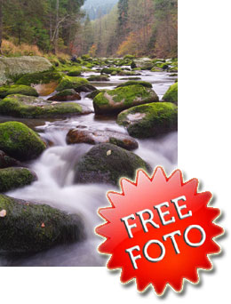 Fotografie zdarma - free foto